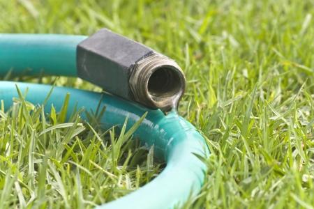 mangera: Fugas en la manguera de jardín Primer plano de agua que fluye de una manguera de jardín que pone en la hierba