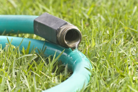 hoses: Leaking garden hose  Close up of water flowing from a garden hose laying on the grass  Stock Photo