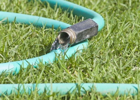 wasting: Leaky garden hose  Close up of water flowing out of a curvy garden hose on the grass  Stock Photo