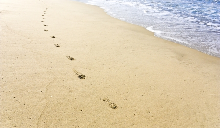 Walking along  Shoe prints on the beach with the tide in the background  Bright sunny day; horizontal view  photo