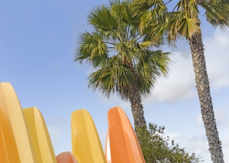 upright row: Close up view of a group of kayak hulls standing upright with palm trees and a cloudy blue sky in the background   Stock Photo