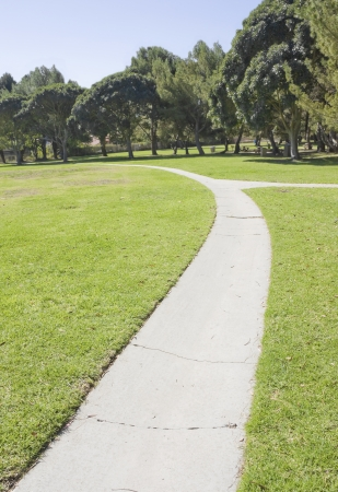 road and path through: Fork in the road   Peaceful, empty, paved pathway curves through a green grassy field in a suburban park  Up the bend, the path forks to the right  The cement path has many cracks  Cluster of trees in the background   Stock Photo