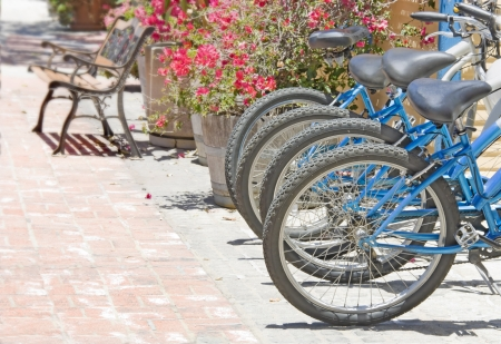 Outdoor bike rental   Row of blue bikes for rent in urban area with weathered brick pathway  Bright red flower planters, wood and metal bench in the background