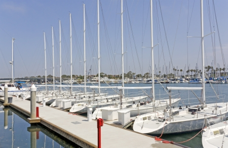 Yacht club sailboats   Identical luxury boats in a row  Reflection of dock in the blue water  Hazy sky  Boats in marina in the background  Horizontal, perspective view   photo