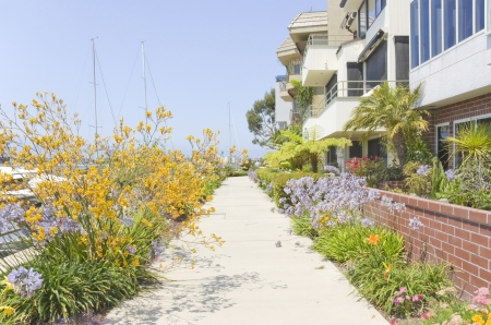 townhome: Pleasant path along the waterfront, Naples, Southern California   Flowers line both sides of this paved walkway in a quiet neighborhood near the water  Tall masts of sailboats on left  Row of expensive townhomes on right  Horizontal photo  Clear blue sky