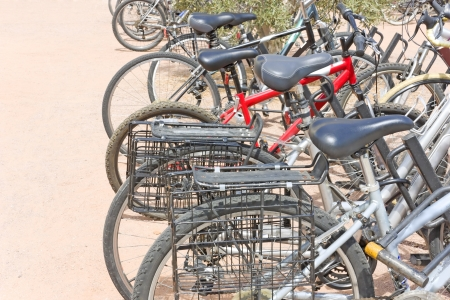 knobby: Row of bicycles locked at a public bike rack   Rear of bikes lined up  Twin rear carrier wire bike baskets, horseshoe bike lock in foreground  Black knobby tires  Blue padded seats  Green bushes in background  Reddish concrete pavement  Horizontal scene  Stock Photo