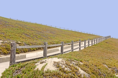 ground cover: Long path across a hill   Outdoor pedestrian narrow paved path on steep hillside  Split rail wood fence  Blue sky background  Green succulent ice plant ground cover on hill  Perspective view  Horizontal photo
