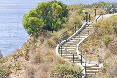 Manmade hillside stairs   Easy way to get to top or bottom  Concrete curving stairway with metal handrail on a steep hill  Trees, dry brush, and cacti growing on the dry, rough surface  Blue ocean water in the background    photo