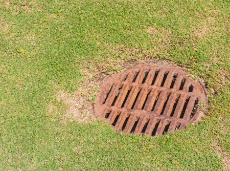 metal grate: Dry storm drain grate on grass  Round rusty metal drainage hole on green lawn with dry brown patches  Close up, horizontal photo