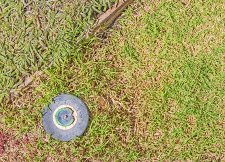 pressurized: Blue plastic round sprinkler head in green grass with dry brown patches   Retracted, closed pop-up lawn sprinkler head, turned off to conserve water on a hot sunny day  Wood divider separates two types of grasses  Horizontal photo