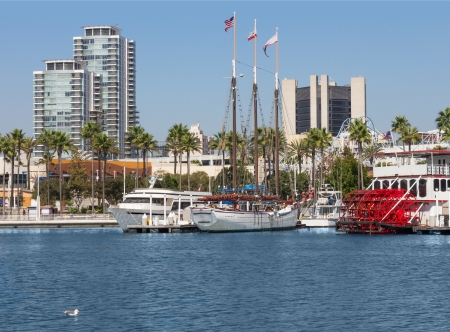 sightsee: Long Beach California city harbor   White luxury yachts, a tall mast ship, and a paddle wheel tour boat docked in urban marina  American flag and California state flag wave from the masts  Palm trees, tall buildings, blue sky in background