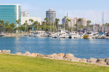 docked: Marina cityscape, Long Beach California  White luxury yachts and small boats docked in city harbor  Tall buildings in background  View from grassy, rocky shore  Horizontal photo