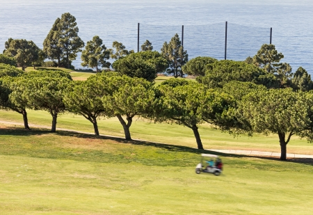 Golf cart moving fast on the fairway   Electric buggy driving up a slope past a row of trees  Blurred motion  Golf course fence netting and ocean in background  Horizontal scene  photo
