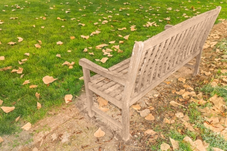 changing seasons: Solitude and quiet contemplation of changing seasons   View from behind an old, wood park bench looking at fallen brown leaves scattered on the grass  Angled view, horizontal landscape scene  Stock Photo