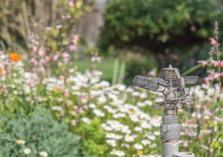 drought    resistant plant: Garden flower bed sprinkler head   Metal sprayer fixture, mounted on pipe  Turned off to conserve water  Blurred greenery in background  Horizontal photo