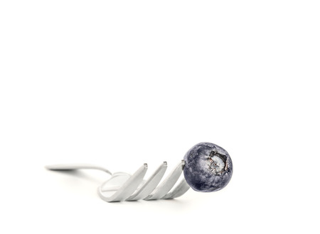 tine: 1 fresh blueberry stuck on the point of a metal fork tine close up   Silver color eating utensil, front view  Room for text, copy space  Isolated on a white background  Drop shadow effect