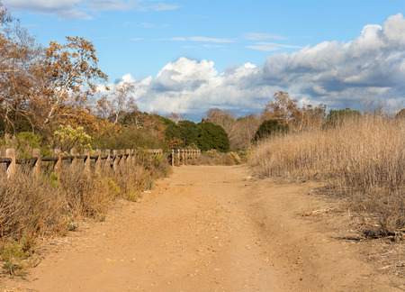 split road: Country fence and dirt road in the fall season   Wood split rail fence on one side of path, trees and bushes. Storm clouds and blue sky background. Perspective view. Stock Photo