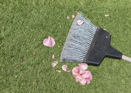 lifecycle: Niza para la limpieza y mantenimiento patio o el concepto de ciclo de vida.