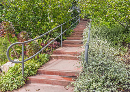 damp: Garden path of red concrete steps with metal handrails perspective view  Damp steps surrounded by green foliage.