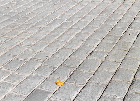tile flooring: Outdoor walkway of gray color stone tiles and one brown leaf.  Ceramic tile flooring, square pattern. Stock Photo