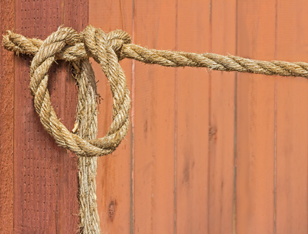 texture twisted: Hemp rope hanging on wood wall.  Rough texture twisted fiber cord loosely looped and tied. Blurred knotted wooden panel background. Nice for a rural country concept.