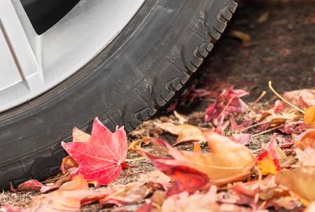 sidewall: Car tire parked in fallen autumn leaves.   Close up profile of tire tread sidewall and red leaf. Concept of tire safety and maintenance in cold weather.