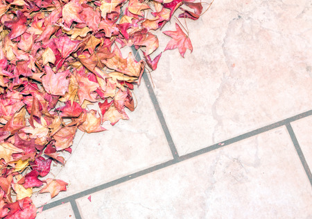 tile flooring: Dry and brittle fallen autumn leaves on textured stone tile floor.   Close up, top down view with copy space.