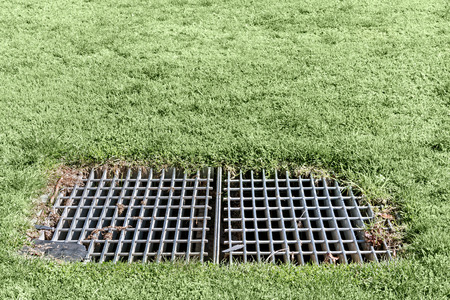 metal grate: Grass growing around an industrial outdoor metal storm drain grate.  Large heavy rectangular metal cover. Stock Photo