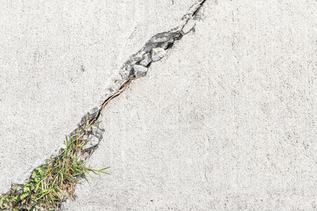 walkway: Grass and weeds growing in cracked sidewalk.  Close up, top down view.