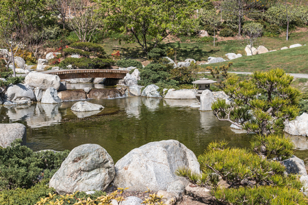 shrubbery: Green Japanese garden.  Trees, shrubbery, rocks, and a small bridge over the pond