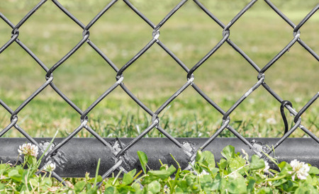chainlink fence: Black metal chainlink fence bottom pole in clover and grass, low angle view.  Selective focus on worn fence, close up detail.