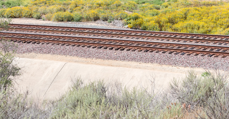 shrubbery: Train tracks through rural area with shrubbery and yellow wildflowers.