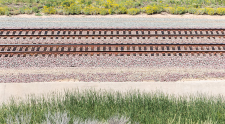 yellow wildflowers: Train tracks through rural area with green grass and yellow wildflowers. Stock Photo