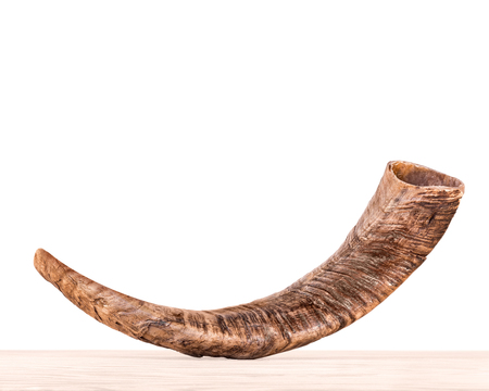 shul: Rosh Hashana holiday shofar on light color wood grain surface, isolated on white background.  Side view of textured rams horn. Jewish New Year religious object. Copy space.