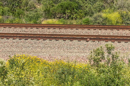 ballast: Train tracks through rural area.  Metal rails on pile of ballast stones. Green bushes and yellow wildflowers.