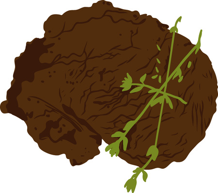 grilled beef steak with herbs  Vector illustration.