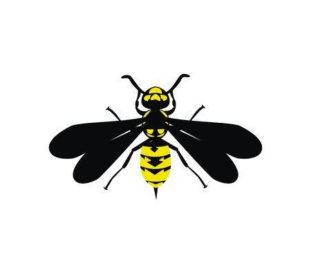 Yellow jacket design vector eps format