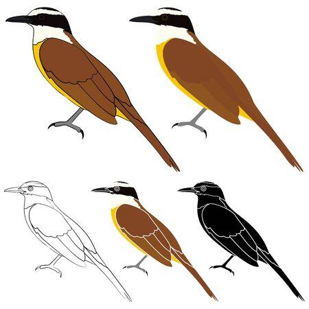 I saw you bird in profile view Ilustração