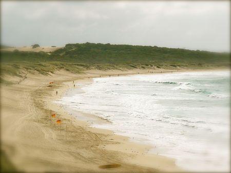 life saving: Cronulla Beach surf life saving flags patrolled area