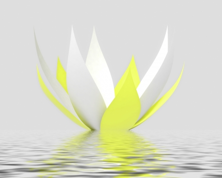 one nice and clear white yellow white waterlilly blossom with petals on water level with reflections  photo