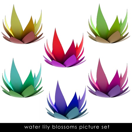 magic lily: isolated six colorful waterlilly blossom set illustration