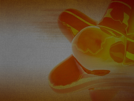 alighted: fluid abstract orange round shape detail background Stock Photo