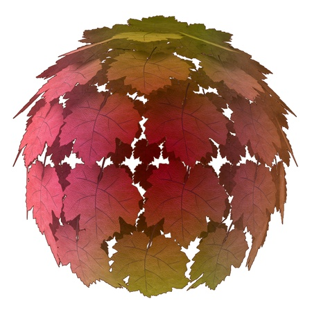 isolated abstract maple treetop colorful autumn concept illustration illustration