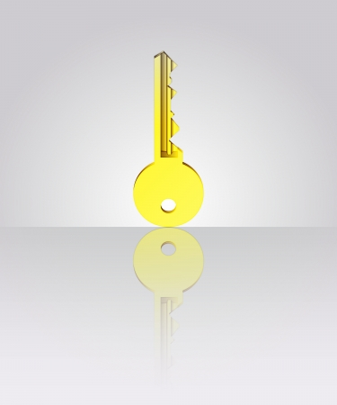 gold key with floor reflection illustration Stock Vector - 19629761