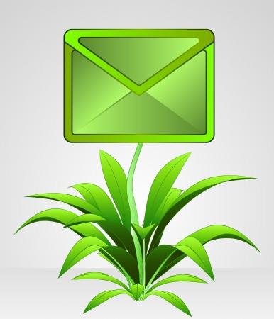 envelop: blossom envelop on information flower illustration