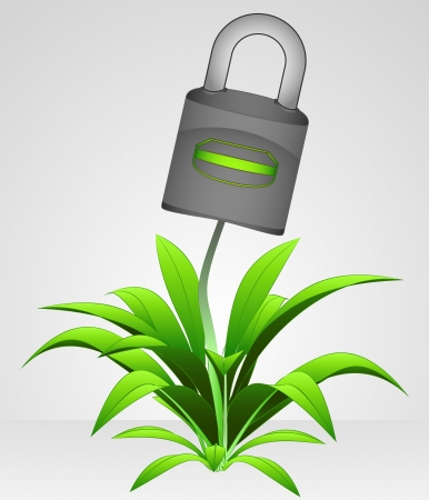 closed vector padlock protect nature illustration Stock Vector - 19919573