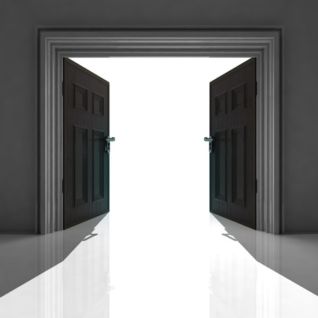double doorway with shadow on the floor illustration illustration