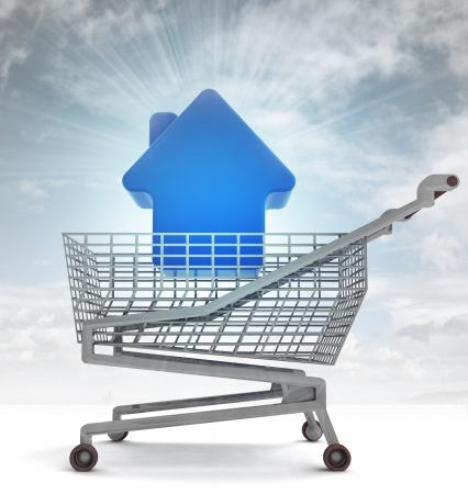profusion: real estate house in shoping cart with sky flare illustration