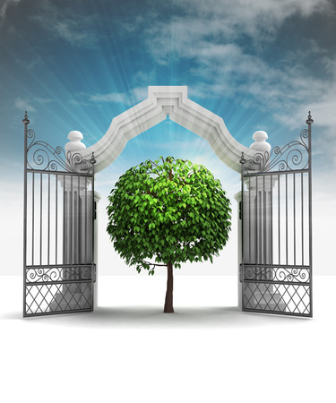 spiritual growth: divine natural tree in heavenly gate with sky flare illustration