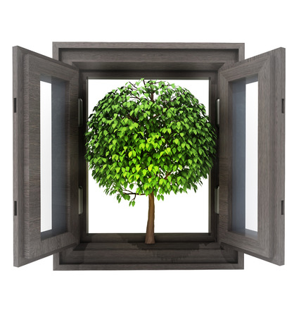 timbered: isolated opened window with leafy tree nature invitation illustration